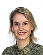 Laan J.M.P. van der (D66)